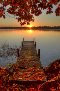 Autumn-Leaves-Fall-Color-Sunrise-Dock-Lake-Sunset-Red-Leaves
