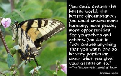 butterfly101416