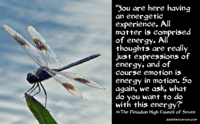 dragonfly101816