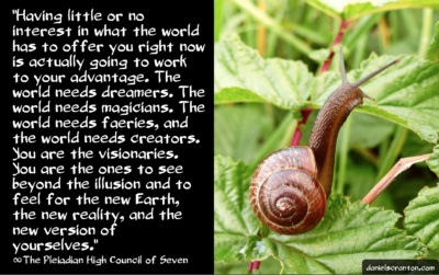 snail101516